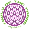 Photo of logo for TOTT Global